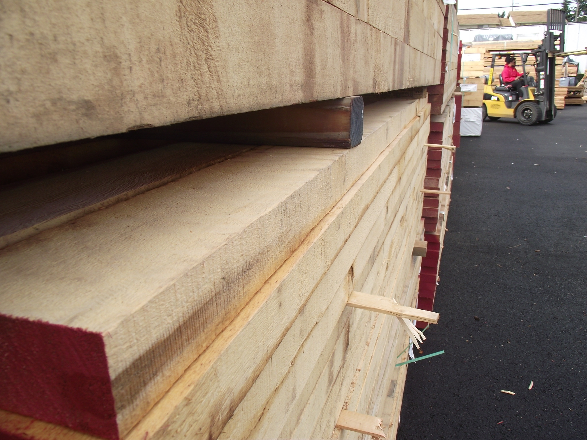 Alaskan Yellow Cedar 171 Mill Outlet Lumber